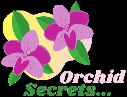 Orchid Secrets